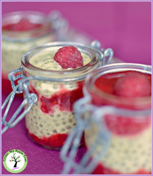 Pistachio chia pudding and raw raspberry gelly